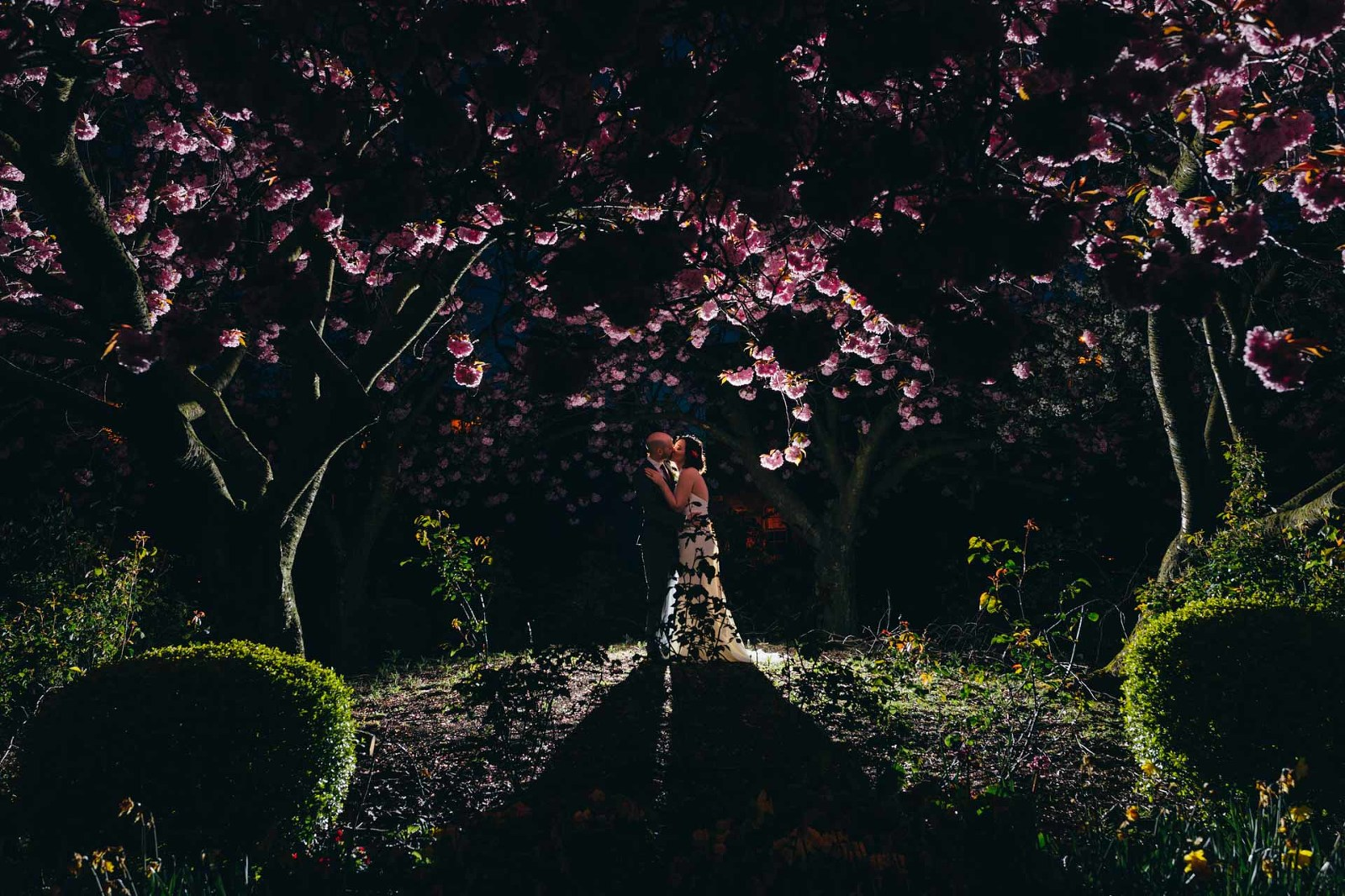 alternative-glasgow-wedding-blythswood-square-backlit-cherry-blossom